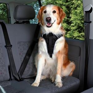 Dog Protect - Säkerhetsbälte för hund