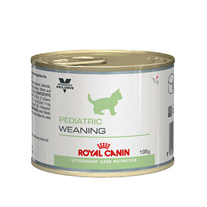 Royal Canin Pediatric Weaning Katt - Våtfoder 12x195g
